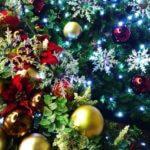クリスマス前に精力剤を試すならラストチャンス